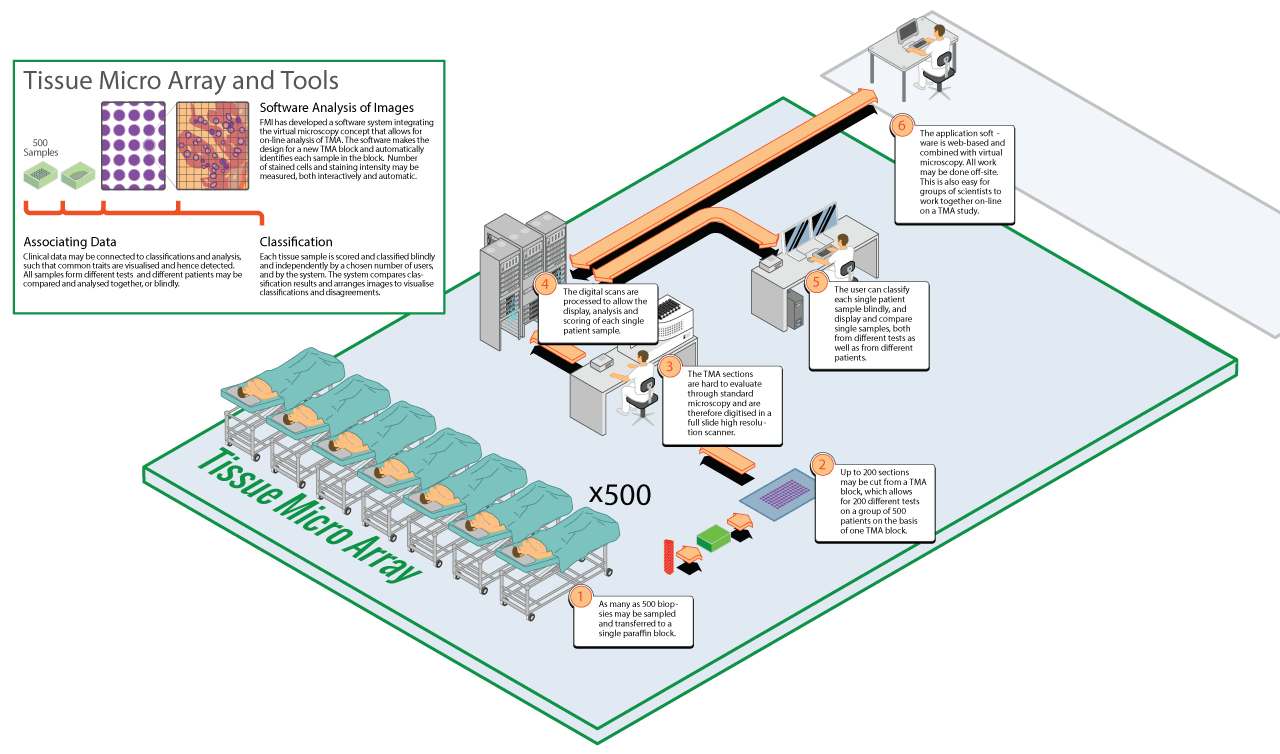 Illustration describing the Medinsight project